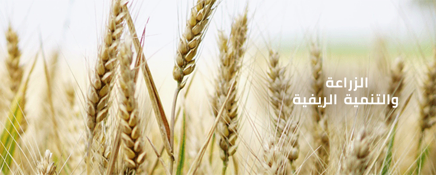 Scroller-Agriculture-ARABIC-Image-1400x561